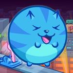 Суши кот 5
