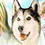 Игра Тимбер говорящая собака