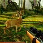 Игра Deer Hunter