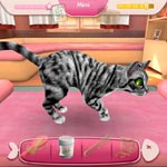Игра Приют для кошек