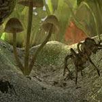 Игра Симулятор муравья