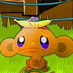 Игра Счастливая обезьянка 10: В тропиках