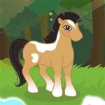Игра Для девочек тесты пони