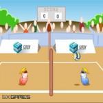 Игра Спортивная: Волейбол на двоих